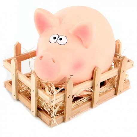 Pig in Wooden Crate