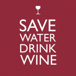 Cocktail Napkins - Save Water Drink Wine - PPD